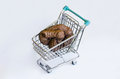 Supermarket shit cart with a concept of consumerism and commercial abuse Royalty Free Stock Photography