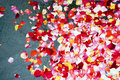 Supernatural Rose Petals Background Stock Photo