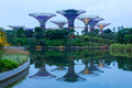 Supertree grove at gardens by the bay and mirror image Stock Photos