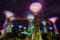 The supertree grove at gardens by the bay singapore march night view of on march in spanning hectares of reclaimed land Royalty Free Stock Photography