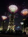 Supertree grove in gardens by the bay supertrees brightly lit at night Royalty Free Stock Images