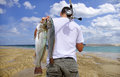 Surf fishing, fish Royalty Free Stock Photo