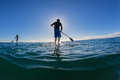 Surf riders sup morning blue horizon two males on their boards standing balancing waiting for waves to ride in the clear ocean Royalty Free Stock Photo