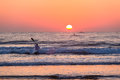 Surf ski canoe paddling out ocean sunrise horizon unidentified male through the small waves with his craft as the sun rises for a Royalty Free Stock Image
