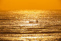 Surf ski paddler training sunrise at on a clear colorful morning on the ocean with calm still sea waters telephoto photo image of Royalty Free Stock Images