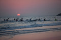 Surf ski paddlers dozen sun rising ocean about twelve persons paddling across the calm waters as the is above the indian on the Stock Image
