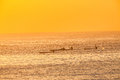 Surf ski paddlers four training sunrise male at on a clear colorful morning on the ocean with calm still sea waters telephoto Stock Photography