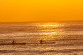 Surf ski paddlers morning reflections training at sunrise on a clear colorful on the ocean with calm still sea waters telephoto Stock Images