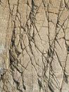 Surface of brown stone cranny background Royalty Free Stock Photo