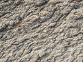 Surface of grey stone cranny background Stock Images