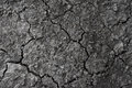 Surface of a grungy dry cracking parched earth for textural back Royalty Free Stock Photo