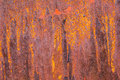 Surface of rusty iron with remnants of old paint texture background Royalty Free Stock Photo
