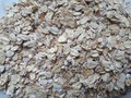 Surface texture and background for a site or screensaver.
