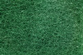 Surface texture of clean scrubber in green color for background or wallpaper Royalty Free Stock Image