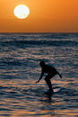 Surfer at sunset Royalty Free Stock Photo