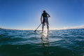 Surfer sup silhouetted shadow blue surf rider unidentified male with paddle blade in hand standing balancing on board waiting for Royalty Free Stock Photos