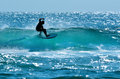 Surfer in Surfers Paradise Gold Coast Australia Royalty Free Stock Photo