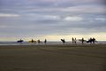 Surfers at dusk on mile beach ahipara new zealand a group of the west coast of s northland region Stock Images