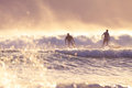 Surfers in the morning in burleigh heads gold coast qld australia Royalty Free Stock Image