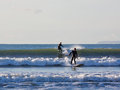 Surfing in Unison Royalty Free Stock Photo