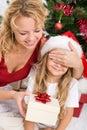 Surprise christmas present Royalty Free Stock Photo