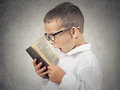 Surprised boy, little man reading book Royalty Free Stock Photo