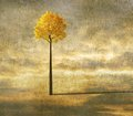 Surreal background with lonely tree Royalty Free Stock Photo