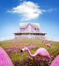 Surreal fantasy pink house flower covered hill surrounded white picket fence yard has plastic pink flamingos Stock Image