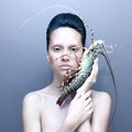 Surreal lady with lobster Royalty Free Stock Photo