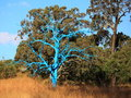 Surreal and real vegetation, bald blue tree in heathland
