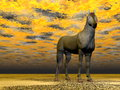 Surrealistic horse with beautiful eyes standing in colorful background Royalty Free Stock Images