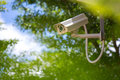 Surveillance camera on the tree with blue sky