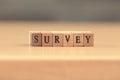 Survey. word written on wood block, vintage retro color tone