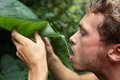 Survival - man drinking from leaf in jungle Royalty Free Stock Image