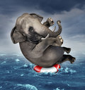 Surviving adversity and managing risk for big business challenges and uncertainty with a large elephant floating on a life Royalty Free Stock Photography