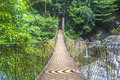 Suspended bridge at deep of tropical forest Stock Photos