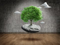 Suspended tree on rock in empty room Royalty Free Stock Images