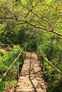Suspension bridge in the forest this bridge is located in national park on hermon river natural reserve of the golan heights north Stock Images