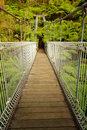Suspension bridge in forest Royalty Free Stock Photo