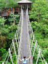 Title: Suspension bridge, nature park