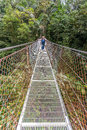 Suspension bridge in tropical rain forest of Costa Royalty Free Stock Photo