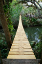 Suspension walking bridge in tropics looking across a river and along the length of a wooden and steel a tropical forest Stock Image