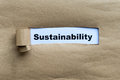 Sustainability word on the torn paper background Royalty Free Stock Photo