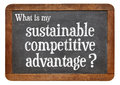 Sustainable competitive advantage concept on blackboard what is my question a question a vintage slate isolated white Royalty Free Stock Images