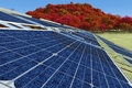 Sustainable energy concept illustration of solar panels Stock Photos