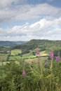 Sutton Bank Landscape, North York Moors Royalty Free Stock Photo