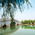 Suzhou gardens Royalty Free Stock Photo