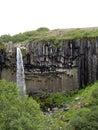 Svartifoss waterfall skaftafell national park iceland in Royalty Free Stock Photo