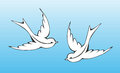 Swallow illustration of two flying swallows with soft blue background Stock Images