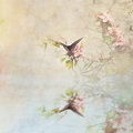 Swallowtail over water beautiful butterfly amidst the blossoms of a crabapple tree with reflection in Stock Image